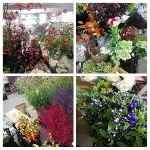【花市場】台風15号の過ぎた朝には・・。