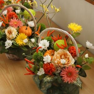 【募集します】10月は秋の実物を楽しむ ♪