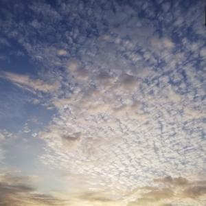 【日々のこと】秋の朝と空♪