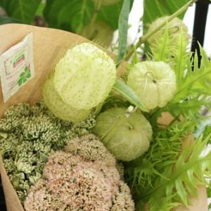 【花束定期便】グリーンや実物のお花の定期便も♪
