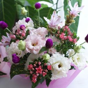 【今日の贈花】発表会にプレゼントするお花は可愛く♪