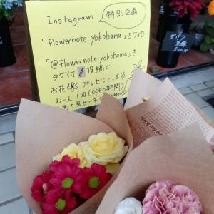 【今月の花屋OPEN】インスタ企画でお花プレゼント♪