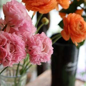 【花屋OPEN】春のお花でお待ちしております♪