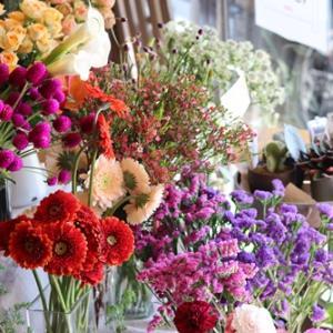 【小さなお花屋OPEN】おすすめのお花がいっぱい♪