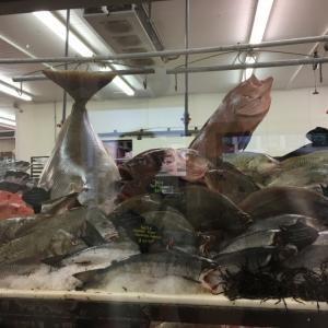 アメリカの魚は高いのか?テキサス州サンアントニオでお刺身用の魚を購入してみた体験記