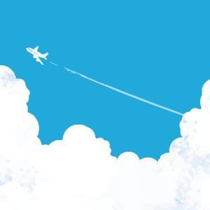 飛行機の荷物(預け荷物とか手荷物)で制限を超えた時の体験談と対策法!