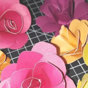 まだまだ続くバラの作り方研究