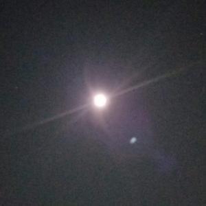 明日は獅子座満月。メルマガ発行のお知らせ