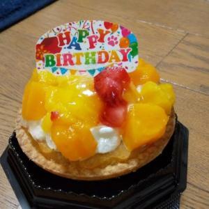 与太郎通信 ~祝 2周年記念&お誕生日 ~