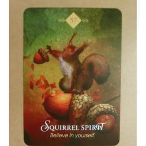 スピリットアニマル・オラクルカードよりー「Squirrel Spirit リスのスピリット」