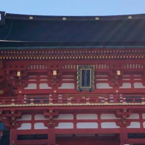 春の伏見稲荷神社は清々しい
