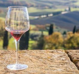 フィサンで飲むべきおすすめワインはこの【2つ】!!ソムリエが詳しく解説します