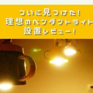 【カップ型?!】キッチンのダクトレールに設置したペンダントライトレビュー!【web内覧会】