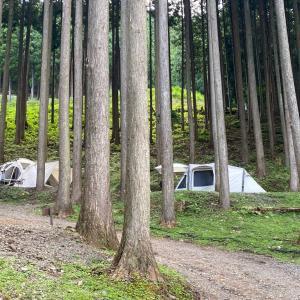 【キャンプレポート】若杉高原おおやキャンプ場
