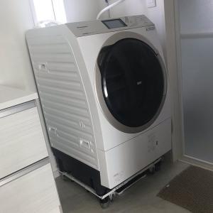 ドラム式洗濯機のプチ掃除をしたらゴミが溜まってました・・・