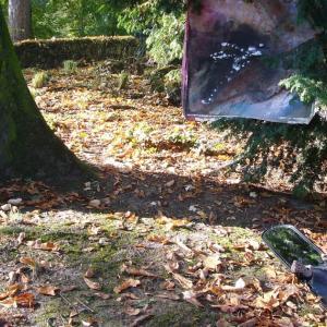 パリ郊外のクラマーの森で。