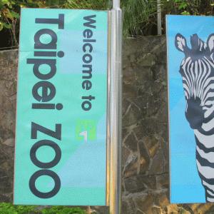 むちゃ広い台北市立動物園でパンダとコアラを見る。園内から貓空ゴンドラ乗り場にも行けるよ