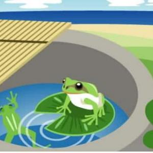 井の中の蛙大海を知らず・・・そろそろ広い大海原へ