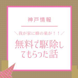 我が家に蜂の巣が!神戸市は無料で駆除して貰える!