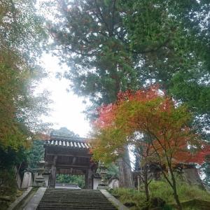■「近鉄全線3日間フリーきっぷ」で一人旅をしてくるよ(その8)紅葉の吉野へ電車旅『塔尾山 如意輪寺』(奈良県吉野町)
