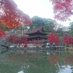 ■深まり行く秋と紅葉を近場で堪能『虎渓山永保寺』(愛知県多治見市)