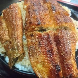 ■「あおき」と「青木」食べ比べ!お値打ち「うなぎ」(三重県鈴鹿市)