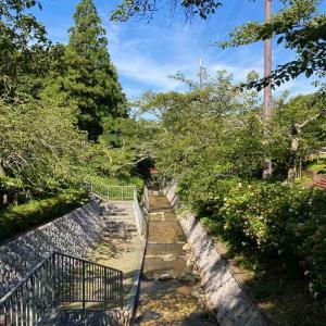 ■日本一低い分水界と川一面の奇石群『闘龍灘』(兵庫県丹波市)
