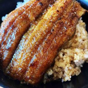 ■弥富でお値打ち鰻丼『海渡(かいと)』(愛知県弥富市)