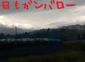 2020/06/17 Wed 晴 カイゼン