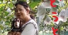 2020/08/09 Sun 晴 モデル犬
