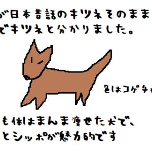 2021/06/12 Sat 雨 初・生野生キツネ