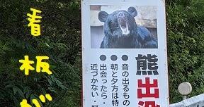 2021/07/31 Sat 晴 キムンカムイ