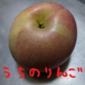 2021/10/27 Wed 晴 誓いのりんご