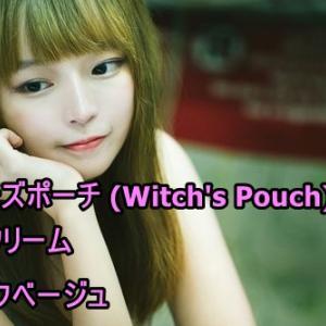 大人可愛い女性のウィッチズポーチBBクリーム 潤い成分で長時間ツヤ肌