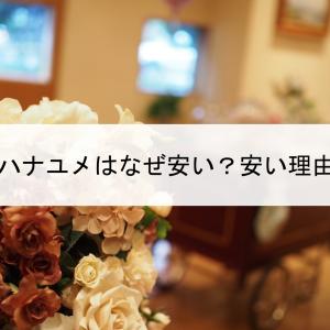 ハナユメはなぜ安い?安い理由をハナユメで安く結婚式をした経験者が語ります。