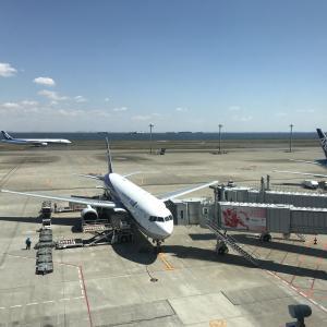 【羽田空港国内線】エアポート グリル&バール:飛行機が見えるレストラン!