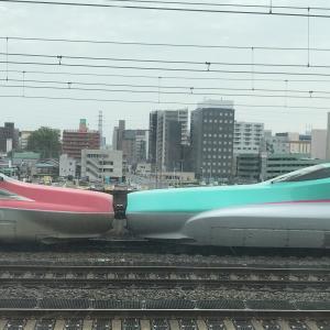 【旅鉄 in 宇都宮】トレインビューホテルと宇都宮駅で電車ウォッチング!