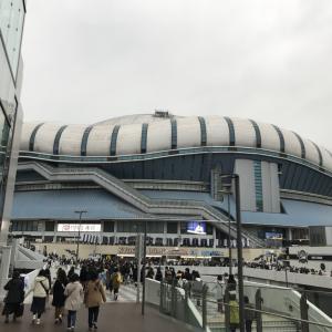 星野源 DOME TOUR 2019『POP VIRUS』大阪公演 参戦記録