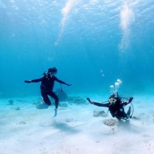 ダイビングを始めてみたい方へ – ヨガ忍の初ダイビング体験記 –