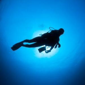 ダイビング初心者:軽器材、何から揃える? 買ってよかったランキング
