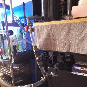 硝酸塩還元筒を再セット & 大量水替え