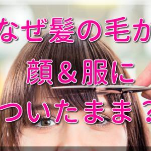 美容院で髪の毛が顔や服についたまま帰される本当の理由と2つの自衛策!