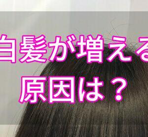 白髪が急に増える理由とは?ストレスで3倍も早まってしまうリスクを現役美容師が解説。