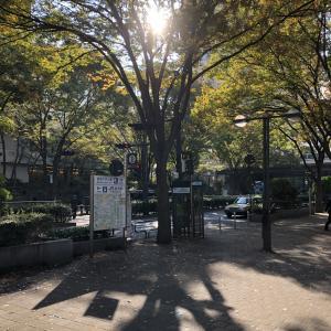 東京で楽しむ一日