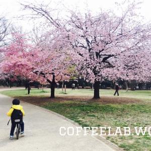 吉祥寺のスペシャルティコーヒー ライトアップコーヒー