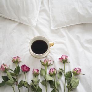 ハンドピックのスペシャリティコーヒーを飲む