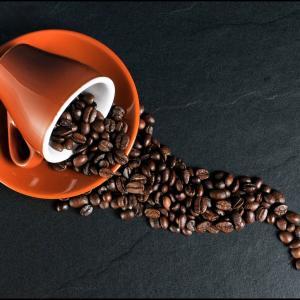 【ビックリ】コーヒー豆のほとんどにカビが存在?!あなたも飲んでいるかも