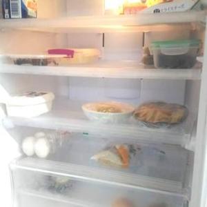 買い物から10日目の冷蔵庫