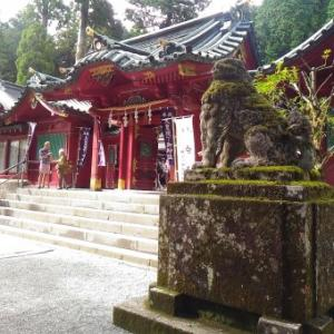 9月の過ごし方、神社の大木に癒される