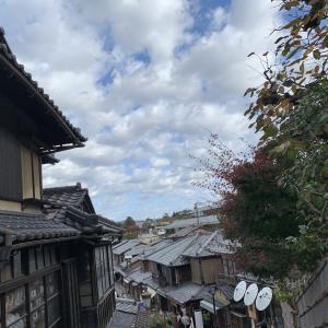 桜の名所 円山公園